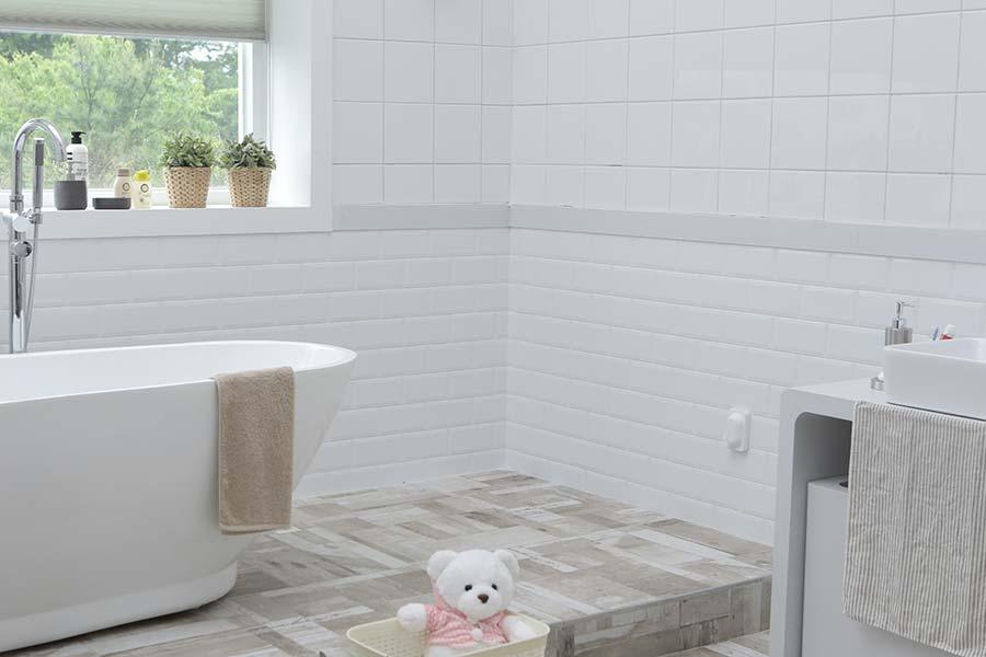 Microrganismi Effettivi per la pulizia del bagno